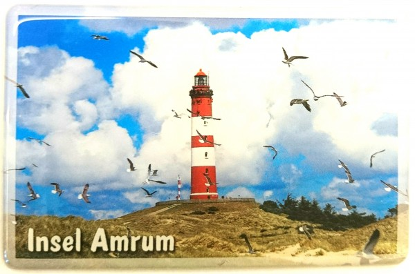 Flexi-Magnet Insel Amrum, Möwenschwarm