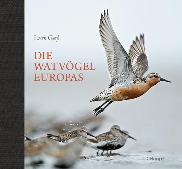 Watvögel Europas