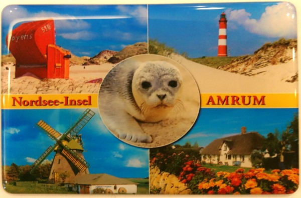 Flexi-Magnet Nordsee-Insel AMRUM, Robbe