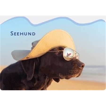 "Kühlschrankmagnet ""Seehund"""