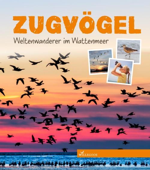Zugvögel - Weltenwanderer im Wattenmeer