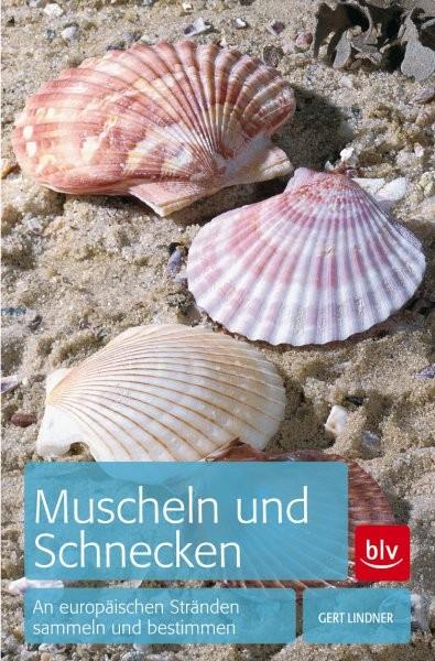 Muscheln und Schnecken - sammeln und bestimmen